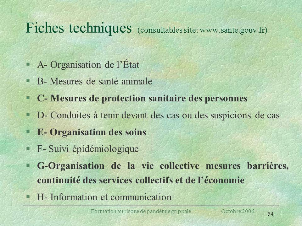 54 Formation au risque de pandémie grippale Octobre 2006 Fiches techniques (consultables site: www.sante.gouv.fr) §A- Organisation de lÉtat §B- Mesure
