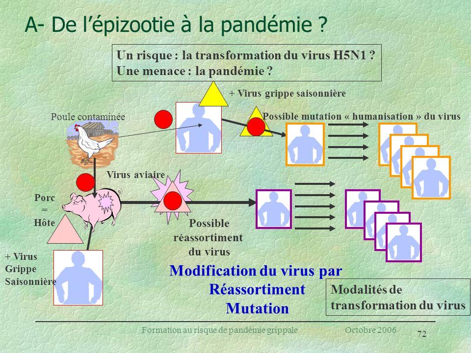 72 Formation au risque de pandémie grippale Octobre 2006 Un risque : la transformation du virus H5N1 ? Une menace : la pandémie ? A- De lépizootie à l