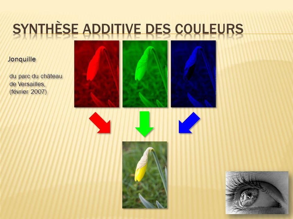 Application à la télévision Chaque pixel est en réalité composé de trois types de luminophores Application à la télévision Chaque pixel est en réalité composé de trois types de luminophores