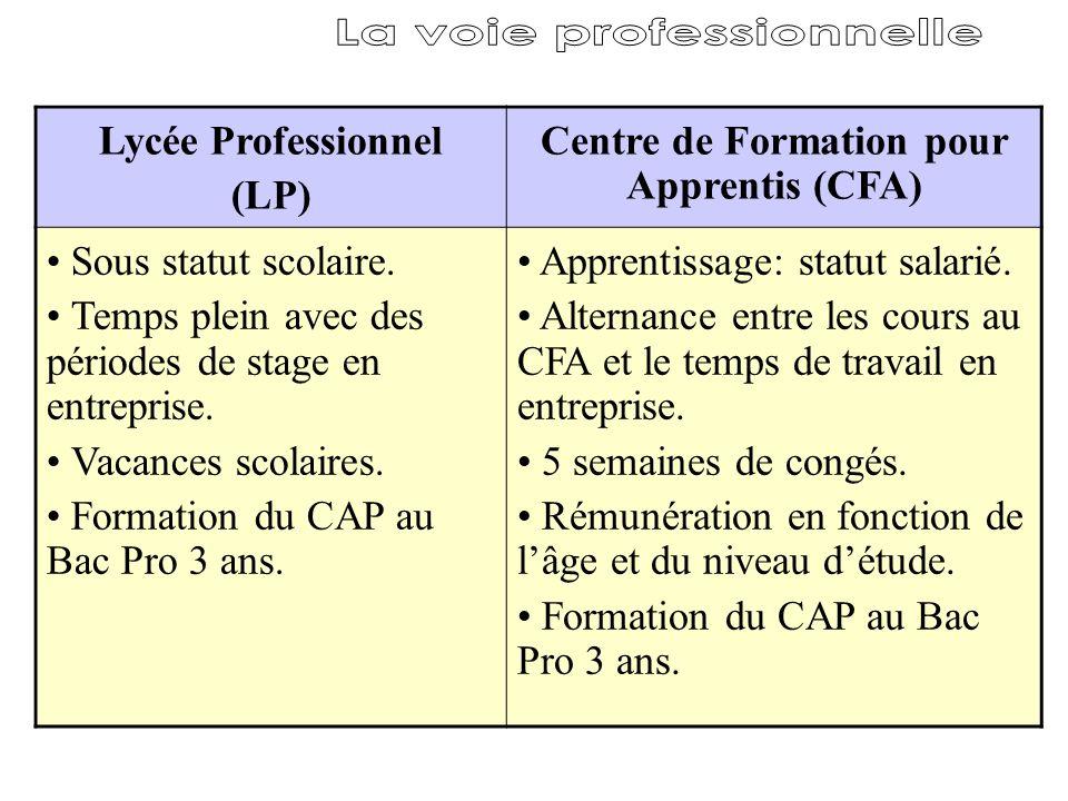 Lycée Professionnel (LP) Centre de Formation pour Apprentis (CFA) Sous statut scolaire. Temps plein avec des périodes de stage en entreprise. Vacances