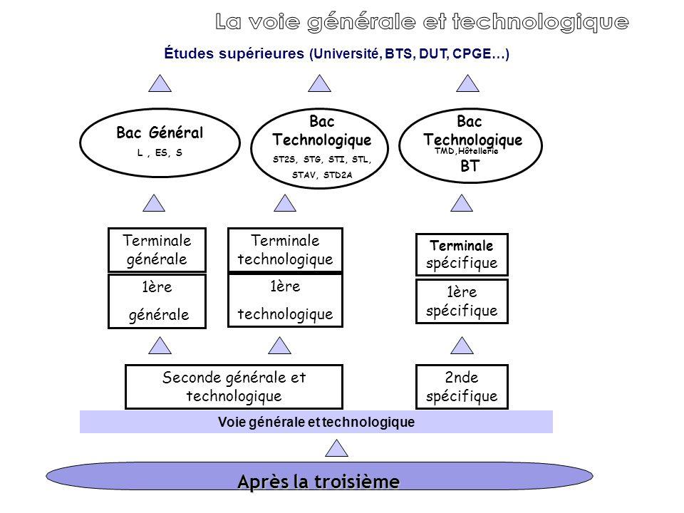 Après la troisième Voie générale et technologique Études supérieures (Université, BTS, DUT, CPGE…) Seconde générale et technologique 1ère générale 1èr