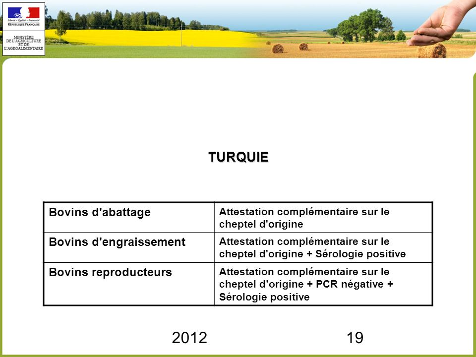 201219 TURQUIE Bovins d'abattage Attestation complémentaire sur le cheptel d'origine Bovins d'engraissement Attestation complémentaire sur le cheptel