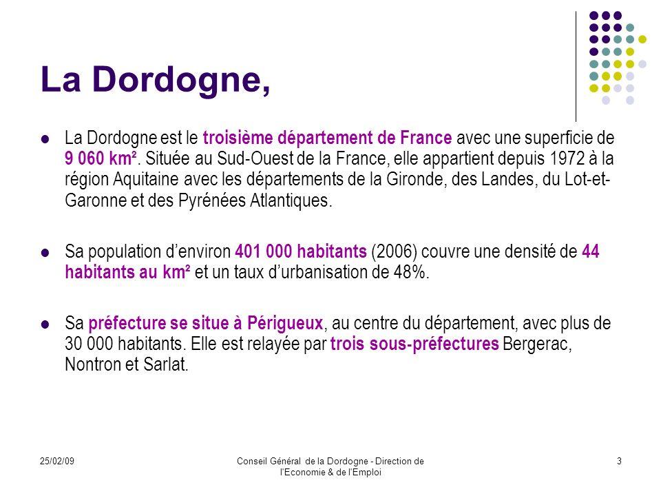 25/02/09Conseil Général de la Dordogne - Direction de l Economie & de l Emploi 4 Projet à vocation départementale Réseau dépiceries solidaires réparti sur lensemble du territoire de la Dordogne