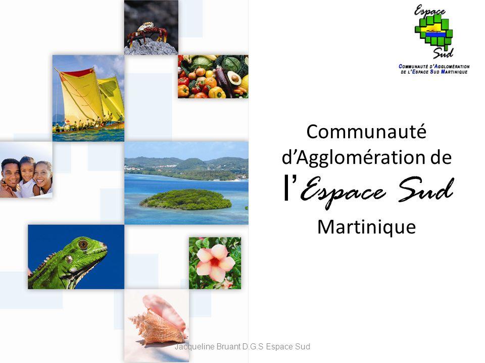 Communauté dAgglomération de l Espace Sud Martinique Jacqueline Bruant D.G.S Espace Sud