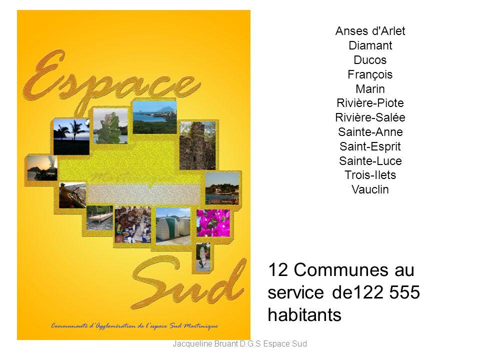 Anses d'Arlet Diamant Ducos François Marin Rivière-Piote Rivière-Salée Sainte-Anne Saint-Esprit Sainte-Luce Trois-Ilets Vauclin 12 Communes au service