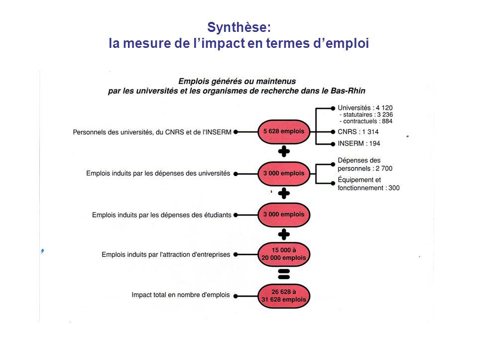 Synthèse: la mesure de limpact en termes demploi