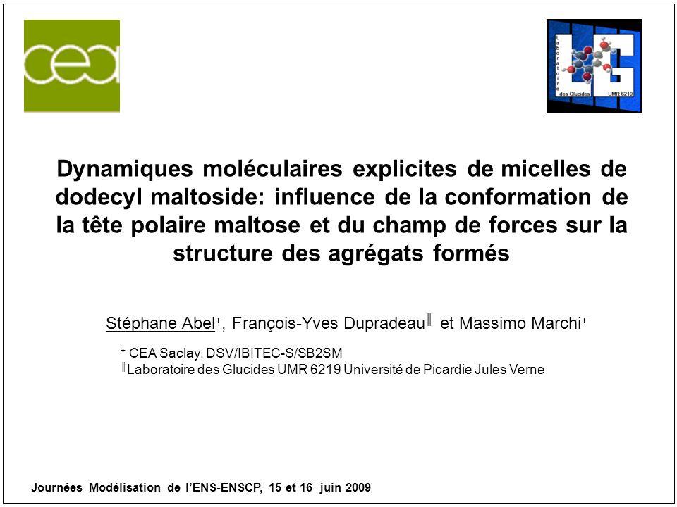 Dynamiques moléculaires explicites de micelles de dodecyl maltoside: influence de la conformation de la tête polaire maltose et du champ de forces sur