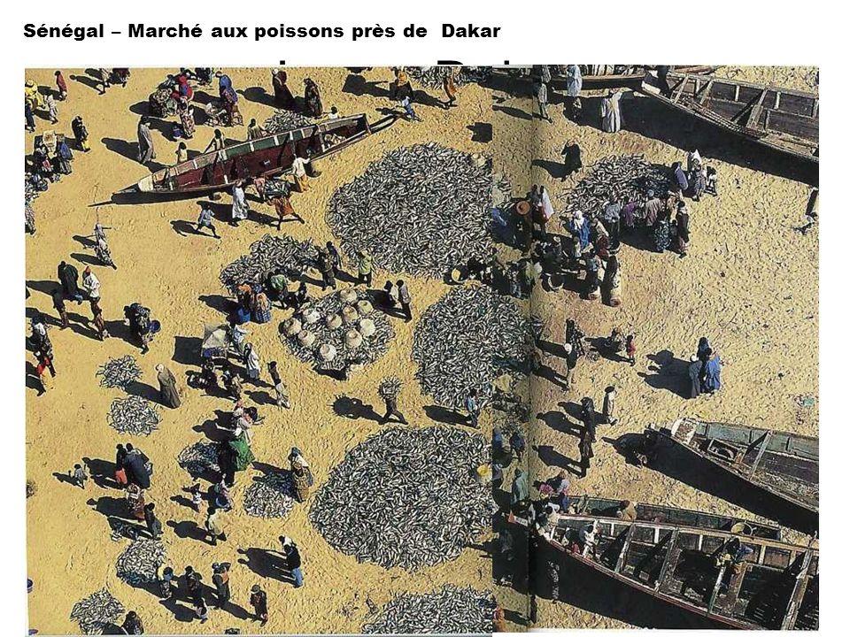 Image Dakar Sénégal – Marché aux poissons près de Dakar