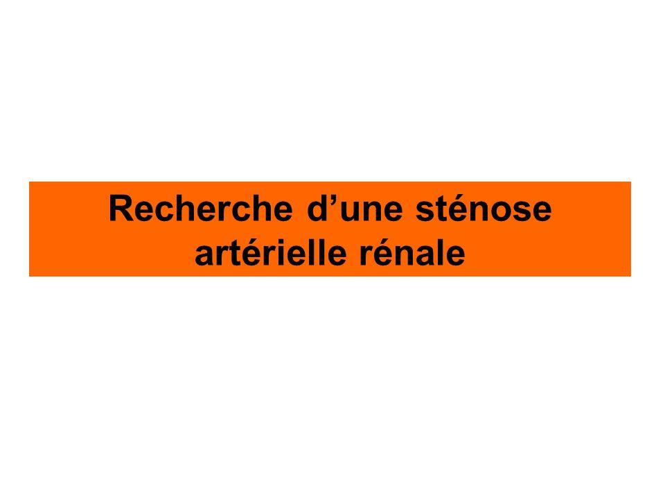 Recherche dune sténose artérielle rénale