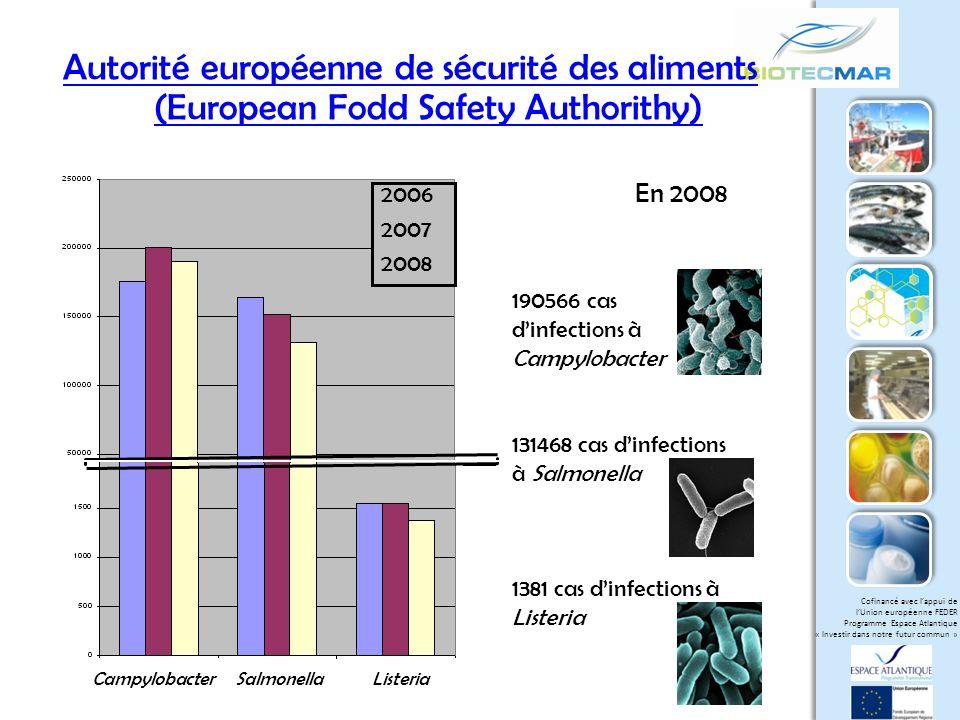 Cofinancé avec lappui de lUnion européenne FEDER Programme Espace Atlantique « Investir dans notre futur commun » Divercine V41 / modèle dinvestigation Bactériocine de classe IIa Carnobacterium divergens V41 (bactérie lactique isolée de viscères de poisson) La divercine V41 possède: - une activité anti-Listeria très élevée - deux ponts disulfure importants pour lactivité antibactérienne - des acides aminés essentiels : tyrosine (Y) et tryptophane (W) TKYYGNGVYCNSKKCWVDWGQASGCIGQTVVGGWLGGAIPGKC