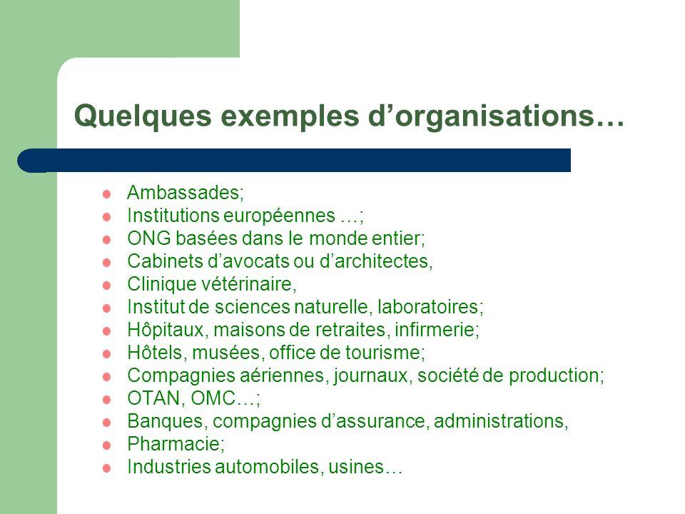 Quelques exemples dorganisations… Ambassades; Institutions européennes …; ONG basées dans le monde entier; Cabinets davocats ou darchitectes, Clinique