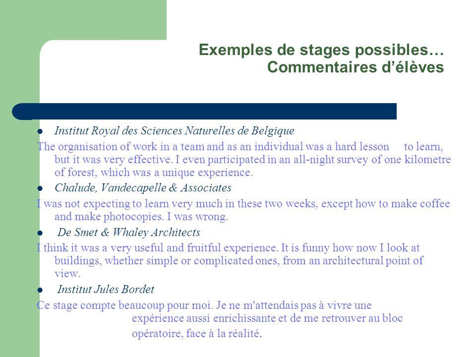 Exemples de stages possibles… Commentaires délèves Institut Royal des Sciences Naturelles de Belgique The organisation of work in a team and as an ind