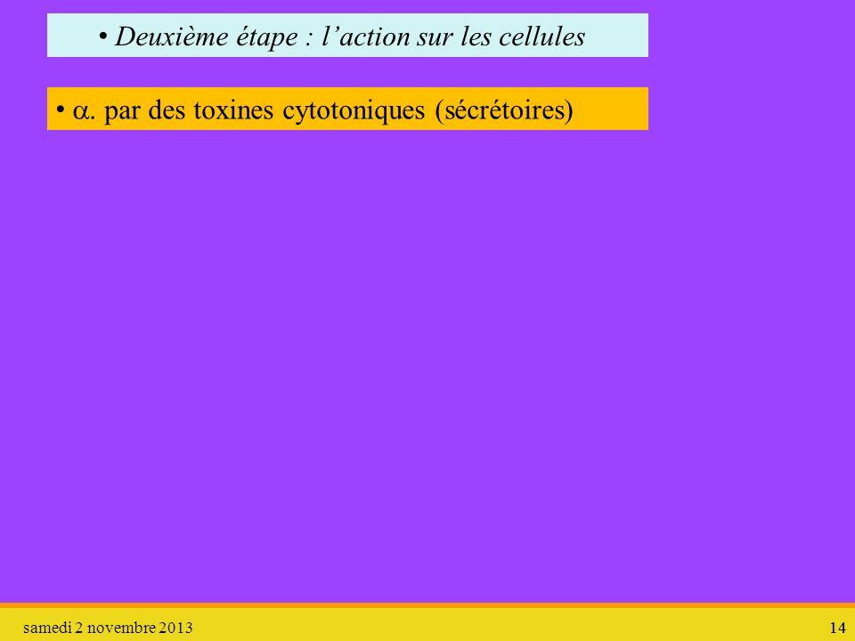 samedi 2 novembre 201314 Deuxième étape : laction sur les cellules par des toxines cytotoniques (sécrétoires)