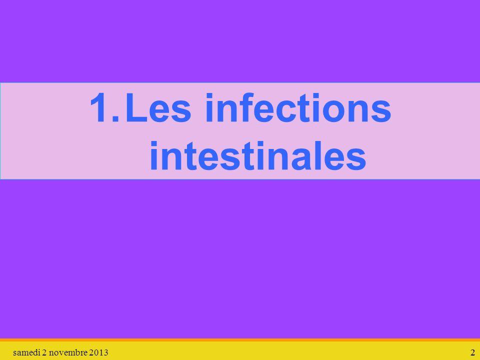 samedi 2 novembre 201322 1.Les infections intestinales