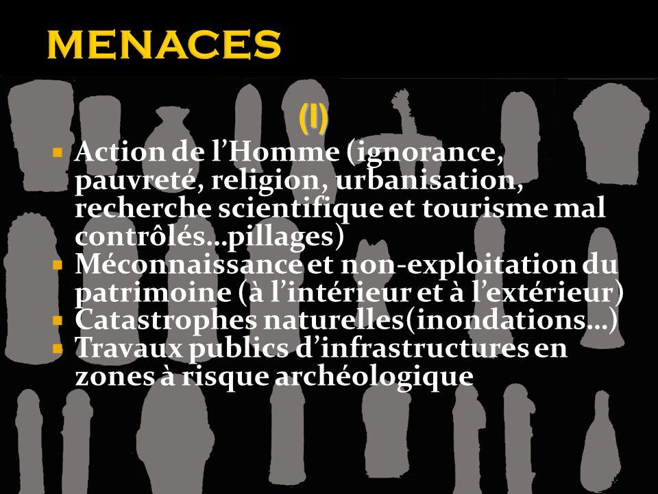 Action de lHomme (ignorance, pauvreté, religion, urbanisation, recherche scientifique et tourisme mal contrôlés…pillages) Méconnaissance et non-exploi