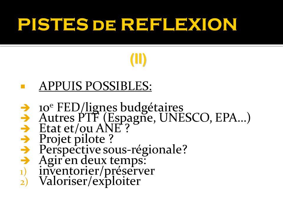 PISTES de REFLEXION APPUIS POSSIBLES: 10 e FED/lignes budgétaires Autres PTF (Espagne, UNESCO, EPA…) Etat et/ou ANE ? Projet pilote ? Perspective sous