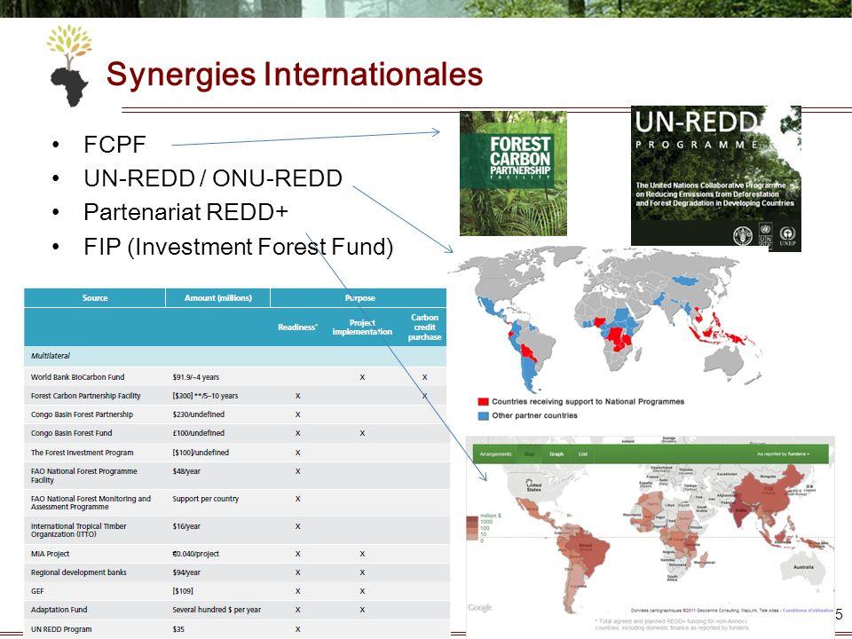 Synergies Internationales FCPF UN-REDD / ONU-REDD Partenariat REDD+ FIP (Investment Forest Fund) 15