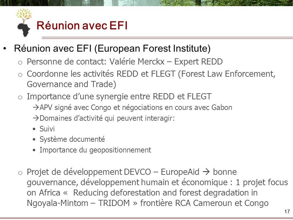 17 Réunion avec EFI Réunion avec EFI (European Forest Institute) o Personne de contact: Valérie Merckx – Expert REDD o Coordonne les activités REDD et