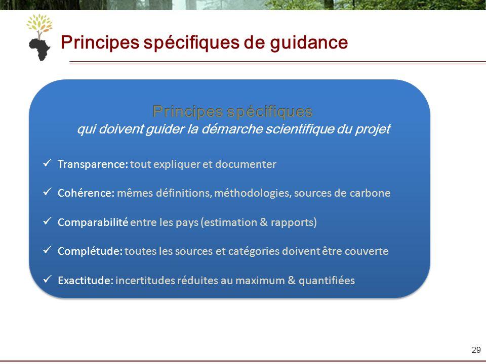 Principes spécifiques de guidance 29