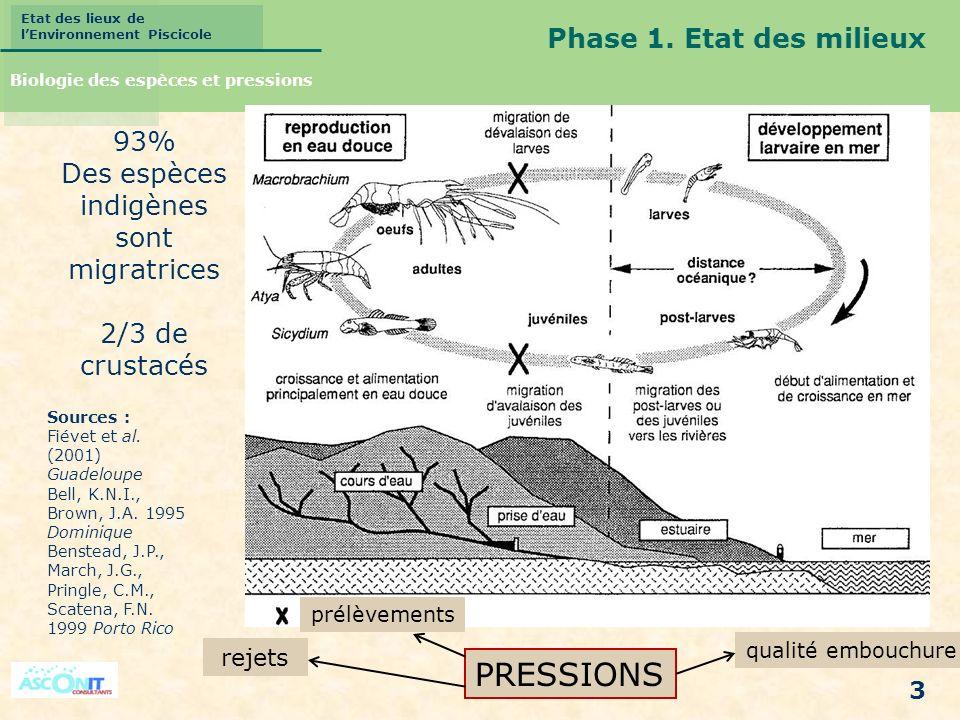 Etat des lieux de lEnvironnement Piscicole 3 PRESSIONS qualité embouchure rejets prélèvements Phase 1. Etat des milieux Biologie des espèces et pressi