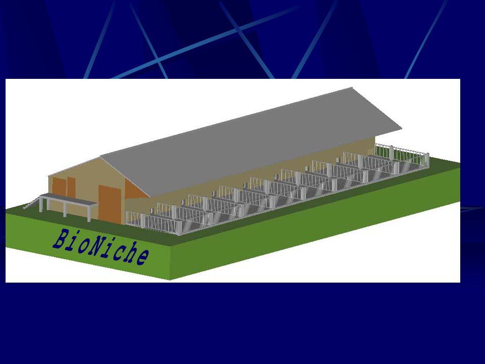 Aspect extérieur du bâtiment Parcours extérieurs (S-E) Toiture symétrique Bardage en bois Accès au bâtiment via quai Toiture en fibro-ciment Canalisation des eaux de toiture