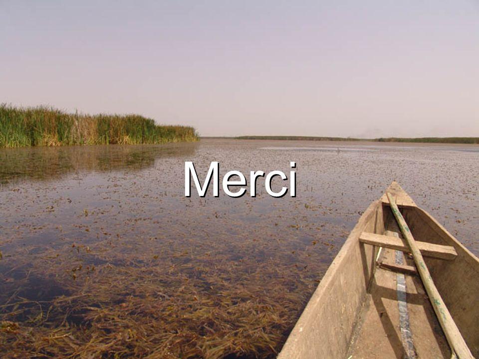 Economic Analysis of Invasive Species 39 Merci