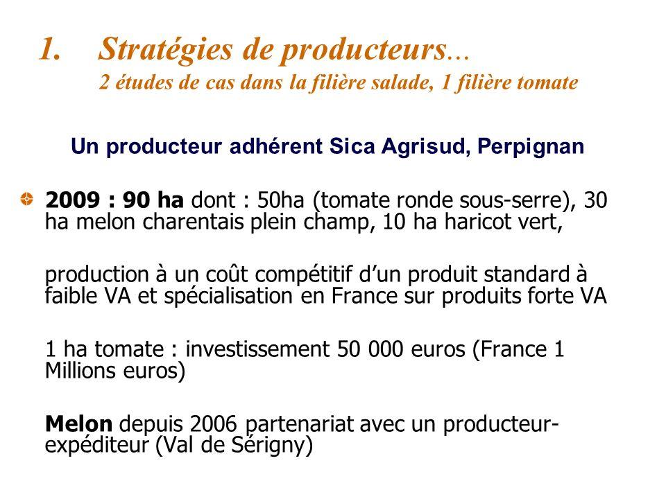 Un producteur adhérent Sica Agrisud, Perpignan 2004 : implantation au Maroc, Agrobio (Agadir) - production tomate ronde standard - Inv initial : 1 mil