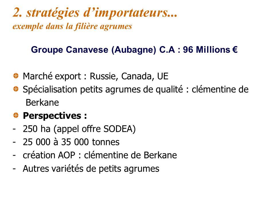 2. Stratégies dimportateurs... exemple dans la filière agrumes Groupe Canavese (Aubagne) C.A : 96 Millions Production propre : 30 à 40 % de lapprovisi
