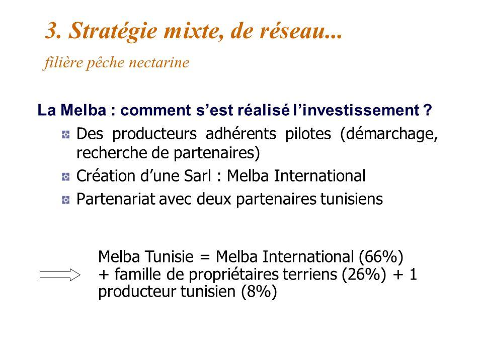 3. Stratégie mixte, de réseau... filière pêche nectarine La Melba : un exemple dinternationalisation de coopérative agricole Bassin dapprovisionnement