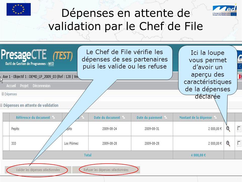 Dépenses en attente de validation par le Chef de File Le Chef de File vérifie les dépenses de ses partenaires puis les valide ou les refuse Ici la lou