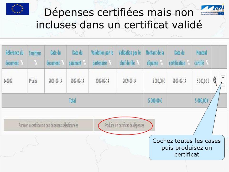 Dépenses certifiées mais non incluses dans un certificat validé Cochez toutes les cases puis produisez un certificat