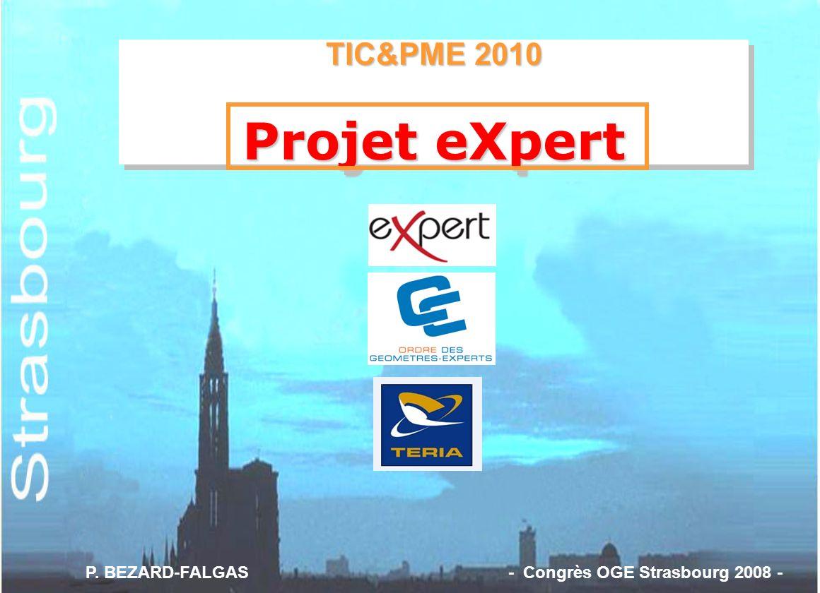 TIC&PME 2010 Projet eXpert TIC&PME 2010 Projet eXpert P. BEZARD-FALGAS - Congrès OGE Strasbourg 2008 -