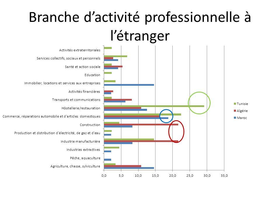 Branche dactivité professionnelle à létranger