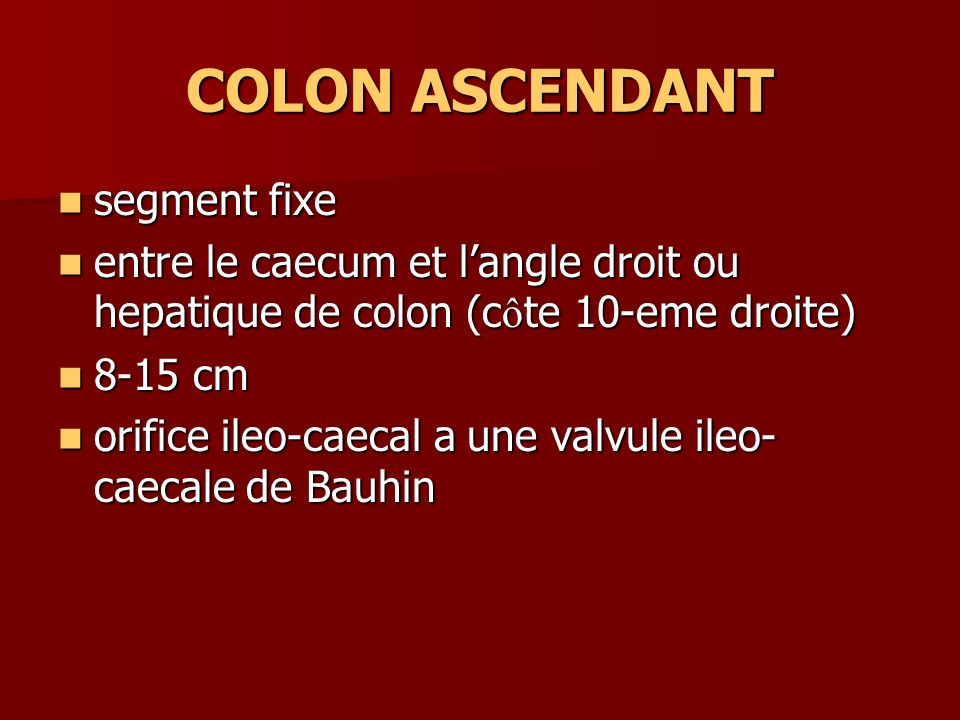 COLON ASCENDANT segment fixe segment fixe entre le caecum et langle droit ou hepatique de colon (c ô te 10-eme droite) entre le caecum et langle droit