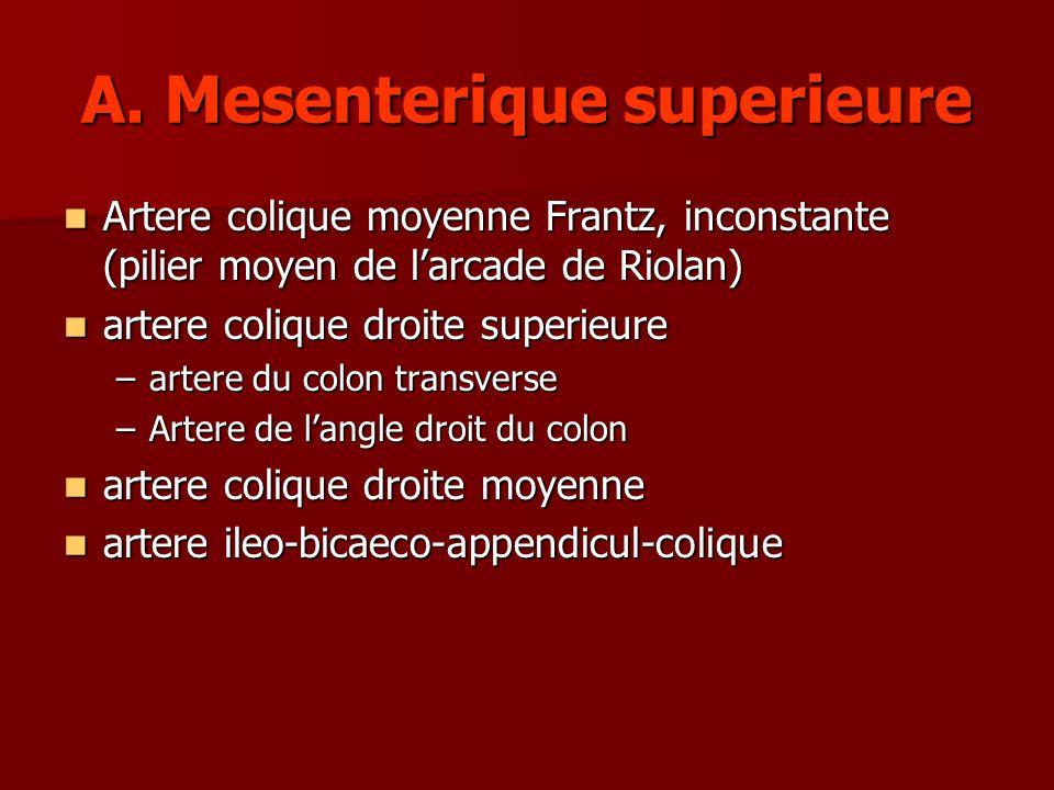 A. Mesenterique superieure Artere colique moyenne Frantz, inconstante (pilier moyen de larcade de Riolan) Artere colique moyenne Frantz, inconstante (