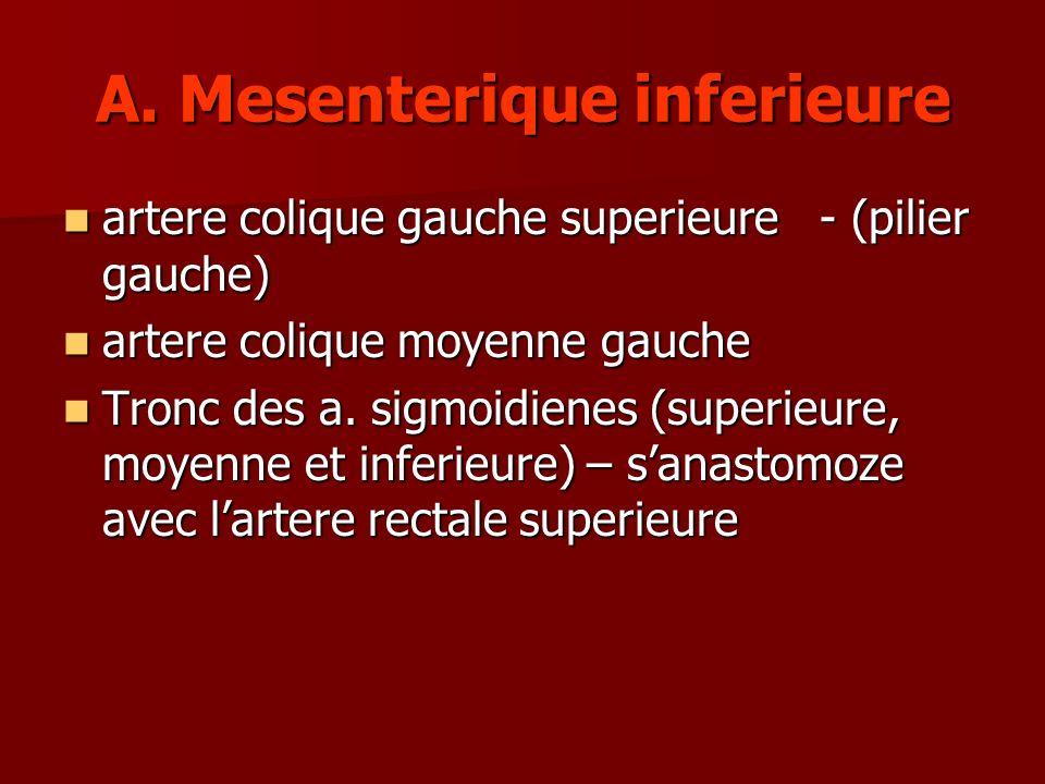 A. Mesenterique inferieure artere colique gauche superieure - (pilier gauche) artere colique gauche superieure - (pilier gauche) artere colique moyenn