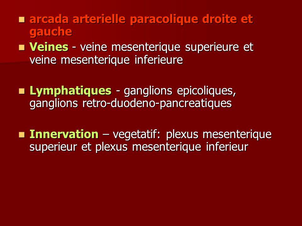 arcada arterielle paracolique droite et gauche arcada arterielle paracolique droite et gauche Veines - veine mesenterique superieure et veine mesenter