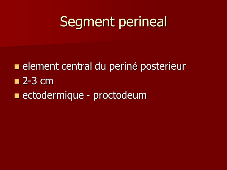 Segment perineal element central du perin é posterieur element central du perin é posterieur 2-3 cm 2-3 cm ectodermique - proctodeum ectodermique - pr