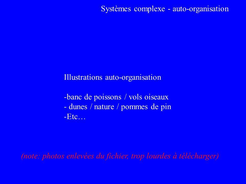 Systèmes complexe - auto-organisation Illustrations auto-organisation -banc de poissons / vols oiseaux - dunes / nature / pommes de pin -Etc… (note: p