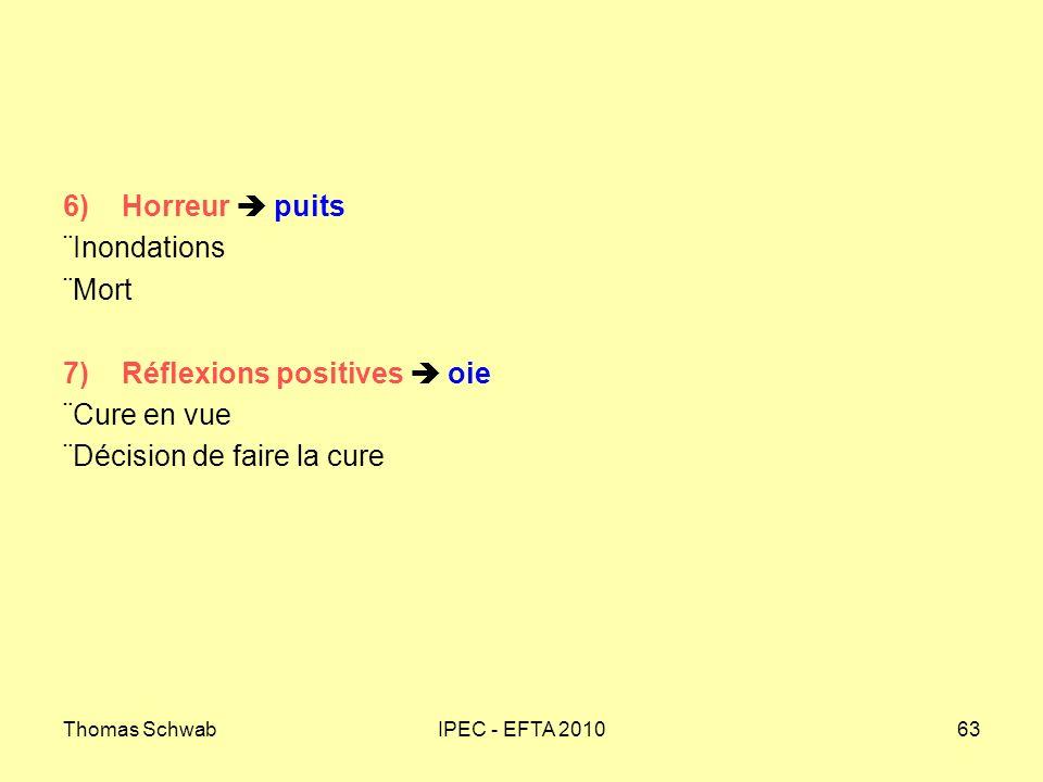 Thomas SchwabIPEC - EFTA 201063 6) Horreur puits Inondations Mort 7) Réflexions positives oie Cure en vue Décision de faire la cure