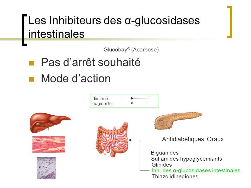 Les Inhibiteurs des α-glucosidases intestinales Glucobay ® (Acarbose) Pas darrêt souhaité Mode daction Antidiabétiques Oraux Biguanides Sulfamidés hyp