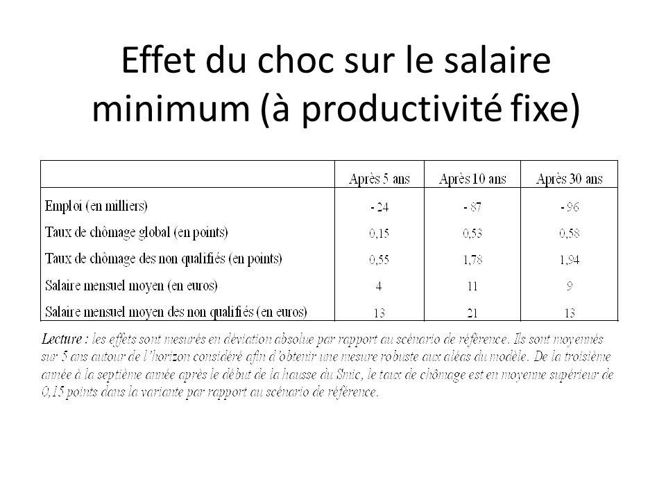 Effet du choc sur le salaire minimum (à productivité fixe)