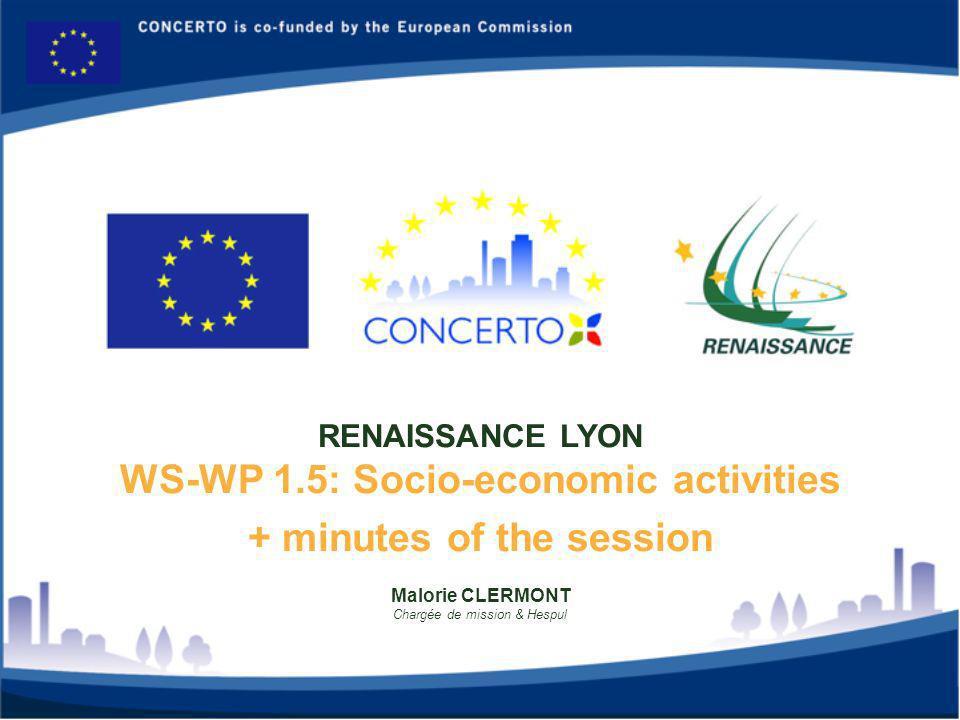 Malorie CLERMONT Chargée de mission & Hespul RENAISSANCE LYON WS-WP 1.5: Socio-economic activities + minutes of the session