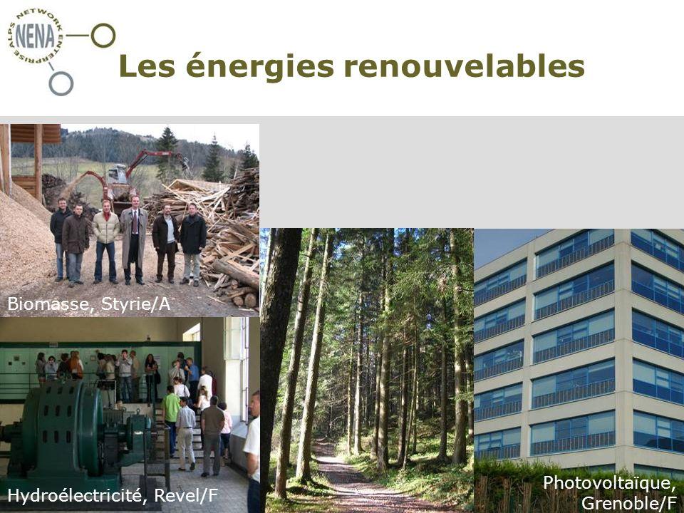NENA - Restructura, Turin/I, 30 novembre 2007 Claire Simon – CIPRA International Les énergies renouvelables oxxxxx Biomasse, Styrie/A Hydroélectricité, Revel/F Photovoltaïque, Grenoble/F