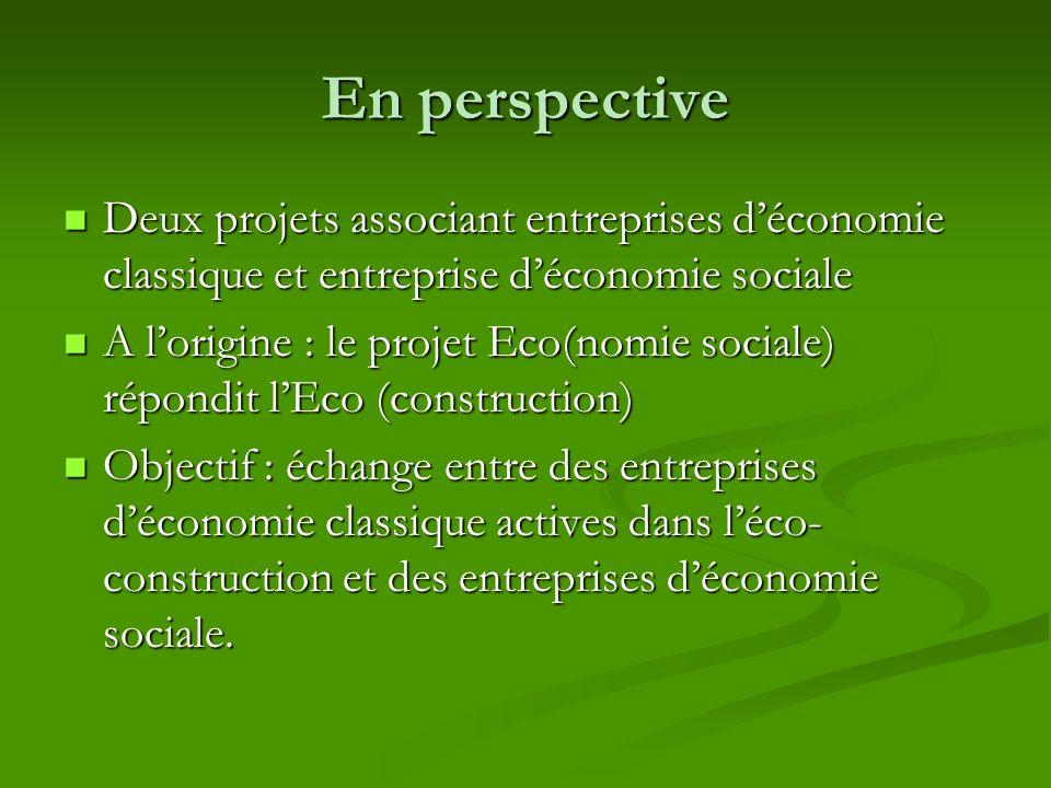 En perspective Deux projets associant entreprises déconomie classique et entreprise déconomie sociale Deux projets associant entreprises déconomie cla