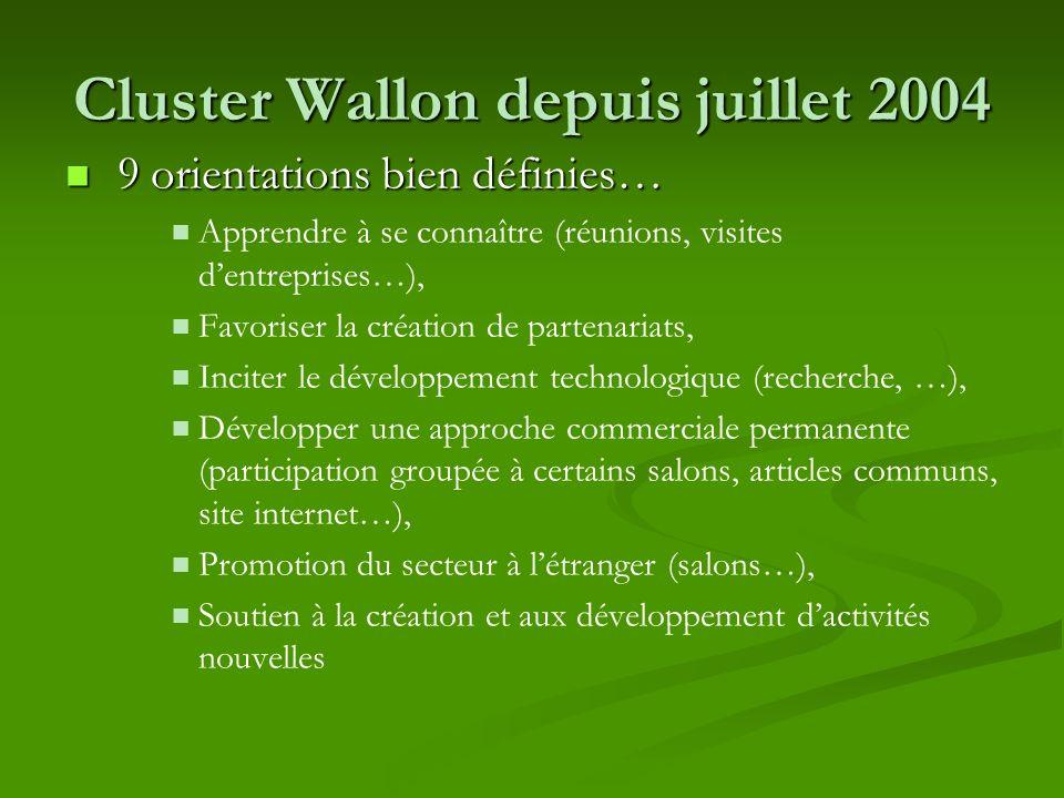 Cluster Wallon depuis juillet 2004 9 orientations bien définies… 9 orientations bien définies… Apprendre à se connaître (réunions, visites dentreprise