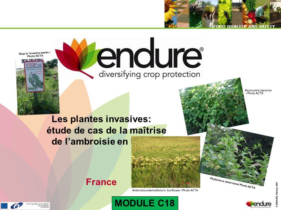© ENDURE, February 2007 FOOD QUALITY AND SAFETY © ENDURE, February 2007 FOOD QUALITY AND SAFETY Les plantes invasives: étude de cas de la maîtrise de