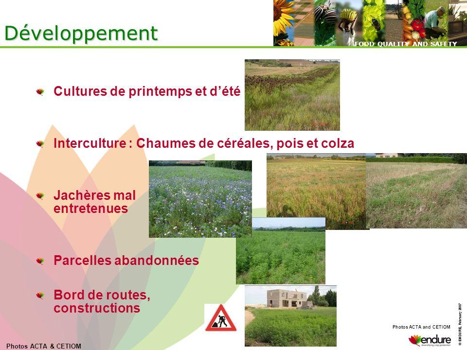 © ENDURE, February 2007 FOOD QUALITY AND SAFETY © ENDURE, February 2007 FOOD QUALITY AND SAFETY Développement Cultures de printemps et dété Intercultu
