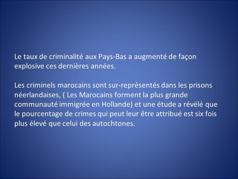 Le taux de criminalité aux Pays-Bas a augmenté de façon explosive ces dernières années. Les criminels marocains sont sur-représentés dans les prisons
