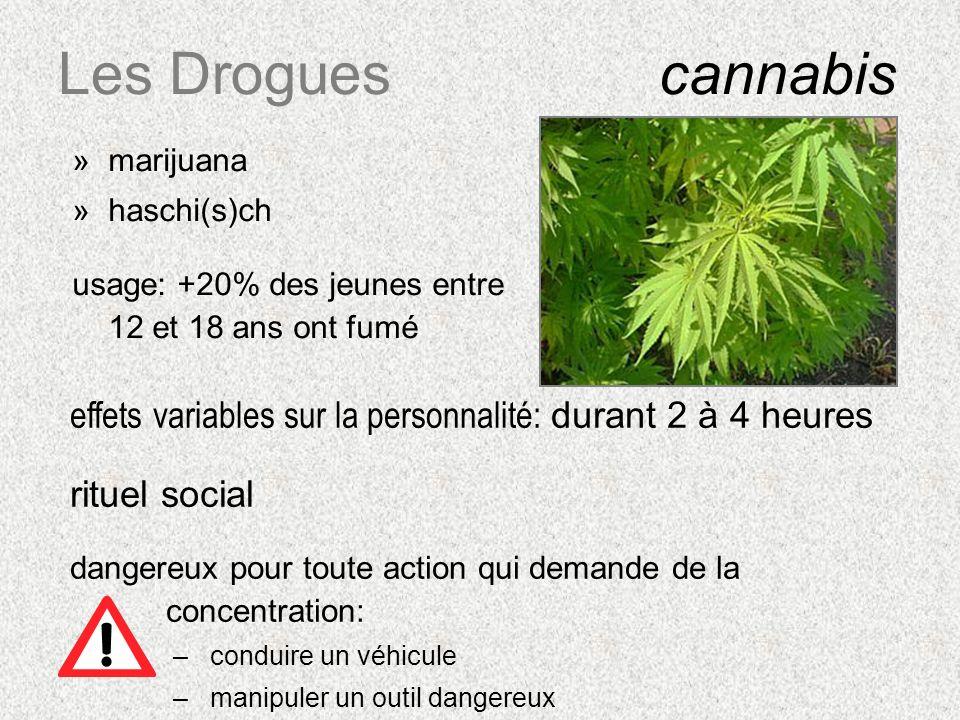 Les Droguescannabis »marijuana »haschi(s)ch usage: +20% des jeunes entre 12 et 18 ans ont fumé effets variables sur la personnalité: durant 2 à 4 heur
